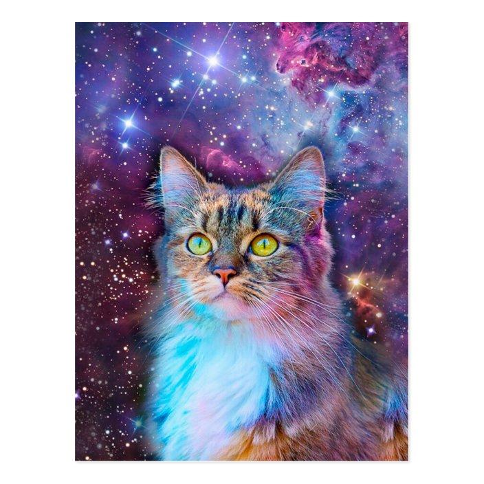 Proud Cat With Space Background Postcard Zazzle Com