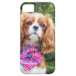 Proud Cavalier King Charles Spaniel Puppy iPhone SE/5/5s Case