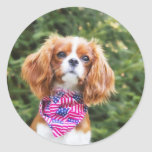 Proud Cavalier King Charles Spaniel Puppy Stickers