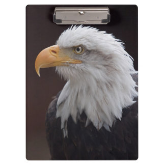Proud Eagle Clipboard