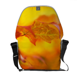 Proud Fall Lover - Autumn Leaves & Colors Courier Bag