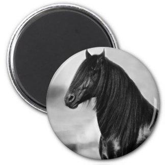 Proud Friesian black stallion horse 2 Inch Round Magnet