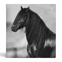 Proud Friesian black stallion horse 3 Ring Binder