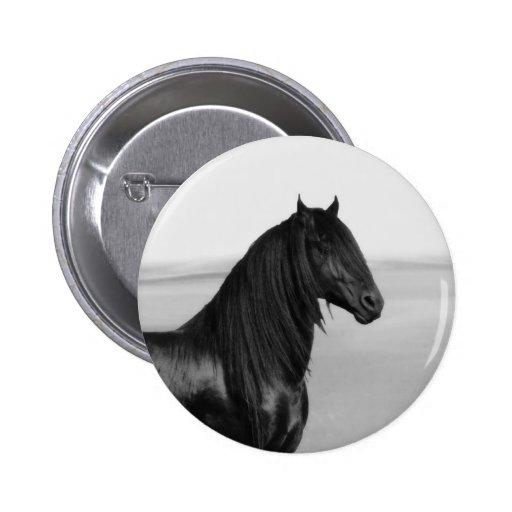 Proud Friesian black stallion horse Buttons