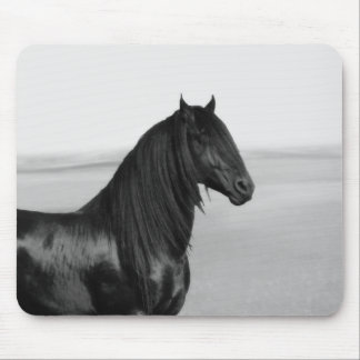 Proud Friesian black stallion horse Mouse Pad
