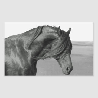 Proud Friesian black stallion horse Rectangular Sticker