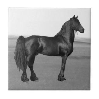 Proud Friesian black stallion horse Small Square Tile