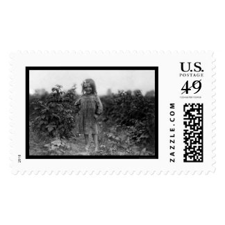 Proud Girl Berry Picker 1910 Postage