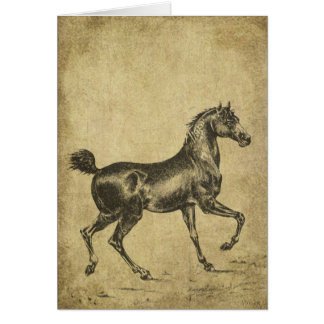 Proud Horse Prancing- Prim Lil Note Cards