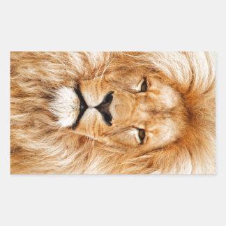 Proud Lion Portrait Rectangular Sticker