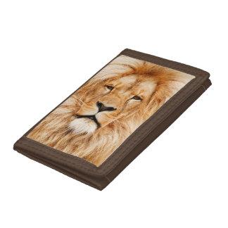 Proud Lion Portrait Tri-fold Wallet
