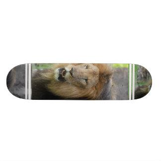 Proud Lion Skateboard