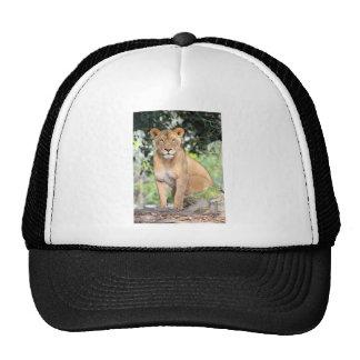 Proud Lioness Trucker Hat