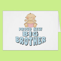 Proud New Big Brother Girl Card
