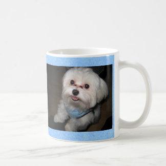 Proud Parent of a Spoiled Rotten Pet Mug-Boy Classic White Coffee Mug