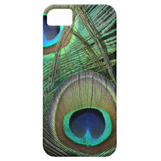 Proud Peacock Feathers iPhone 5 Case