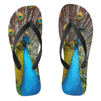Proud Peacock Flip Flops