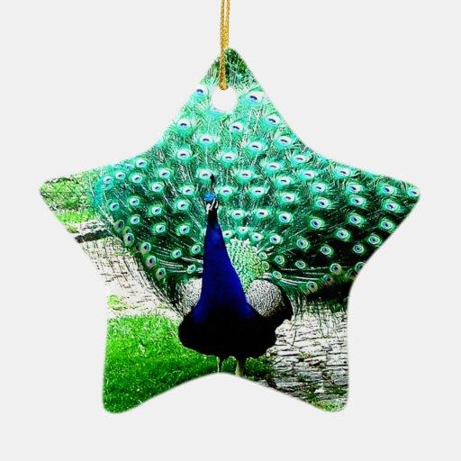 Proud peacock ornaments