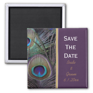 Proud Peacock Purple Save The Date Magnet