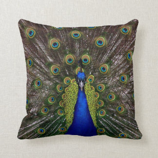 Proud Peacock throw pillow