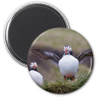 Proud Puffin 2 Inch Round Magnet