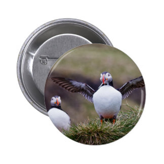 Proud Puffin Pinback Button