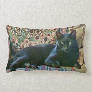 Proud Puss,Black Cat American MoJo Pillows