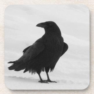 Proud Raven Beverage Coaster
