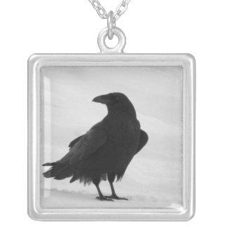 Proud Raven Jewelry