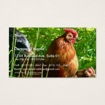 Proud Rooster Chicken Bird Business Card