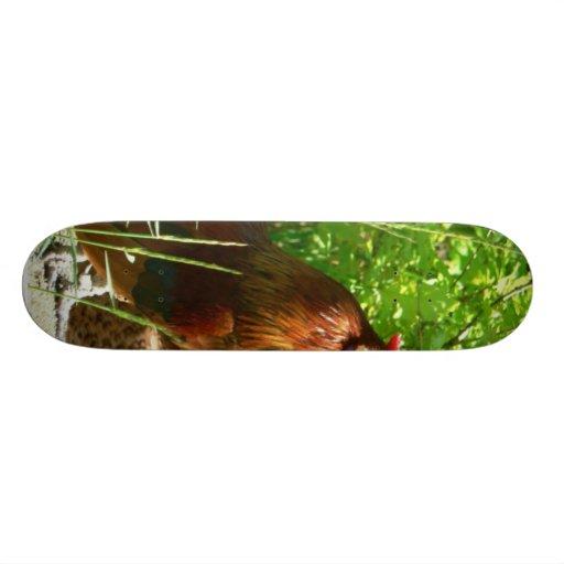 Proud Rooster Skateboard Decks