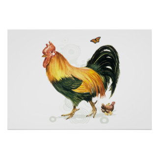 Proud Rooster with hen and chickens. Posters