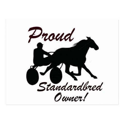 Proud Standardbred Owner Postcard