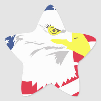 Proud to Be American Star Sticker