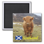Proud to be Scottish! 2 Inch Square Magnet