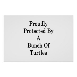 Proudly Protected By A Bunch Of Turtles Poster
