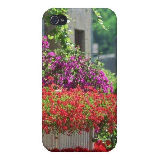 Provencal rojo florece en la ciudad de Carpentras  iPhone 4/4S Fundas