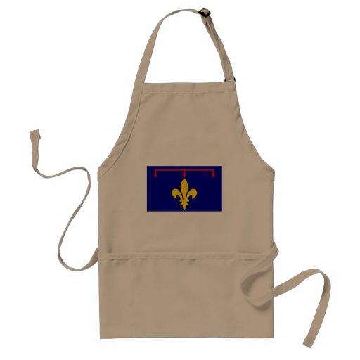 Provence (Alternate), France flag Adult Apron