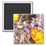 Provence Fresh Purple Garlic 2 Inch Square Magnet