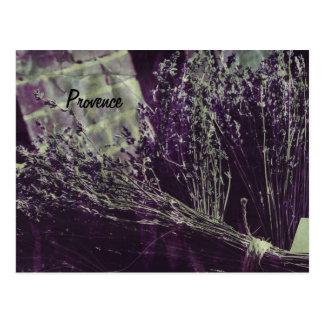 provence lavender postcard
