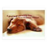 Proverbio irlandés y perro el dormir postal