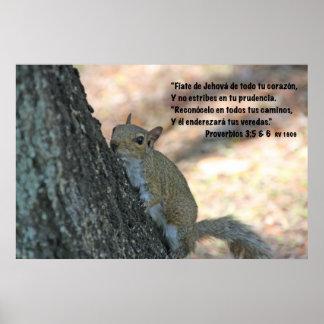 Proverbios 3-5,6 con Ardilla Poster