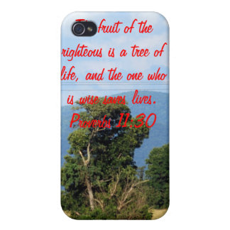 Proverbs 11:30 cover for iPhone 4