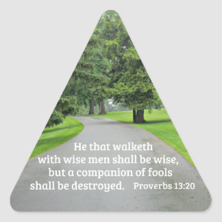 Proverbs 13:20 He that walketh with wise men Triangle Sticker