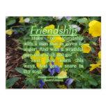 Proverbs 22:24-25 post card