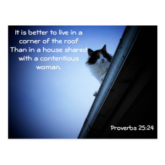 Proverbs 25  24 Cat on a Roof Meme Postcard