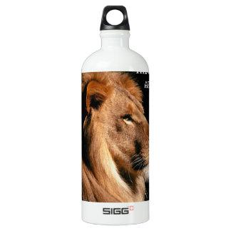 Proverbs 28:1 aluminum water bottle