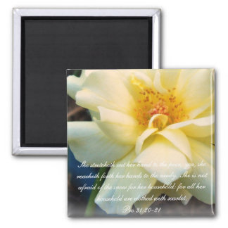 Proverbs 31 Collection ~Pro 31:20-21 Magnet