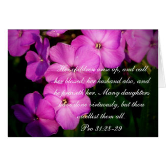 Proverbs 31 Collection Pro 31 28-29 Cards