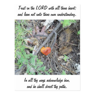 Proverbs 3:5-6 postcard